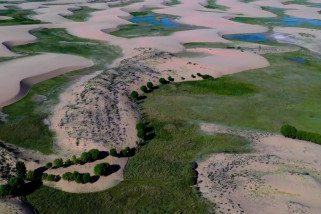 Gurun terbesar kedelapan di China berubah jadi hijau