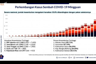 Jumlah kasus sembuh COVID-19 nasional naik 35,8 persen