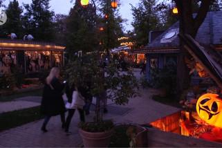 Mari tengok labu terbesar musim Halloween tahun ini di Tivoli Gardens