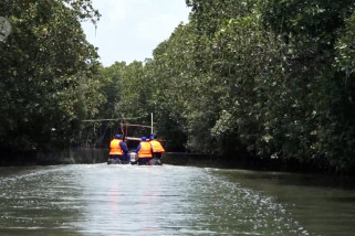 Tanam mangrove di Brebes, 3 menteri resmikan padat karya