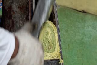 Tembakau berkualitas dari kaki Gunung Sinabung