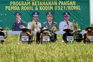 Komitmen Riau untuk miliki produk pertanian unggulan