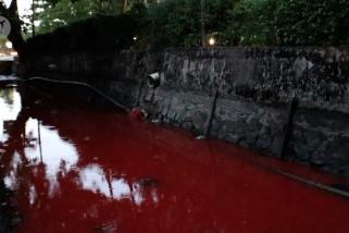 Pontianak gempar air di parit berubah warna merah