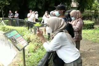 Dikunjungi 16 ribu orang, Ragunan kerahkan 50 personel awasi prokes
