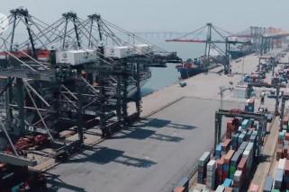 Menengok terminal peti kemas China yang beroperasi otomatis