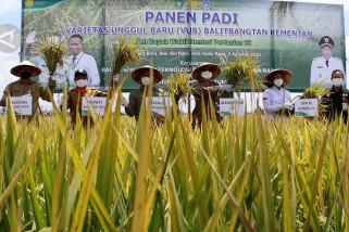 Akselerasi pembangunan sektor pertanian di Kubu Raya
