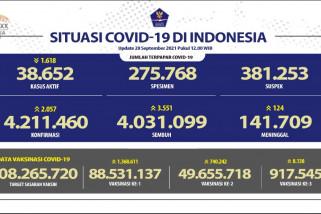 Kasus sembuh harian COVID-19 bertambah 3.551