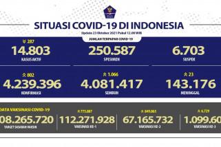 1.066 orang sembuh dari COVID-19 pada 23 Oktober